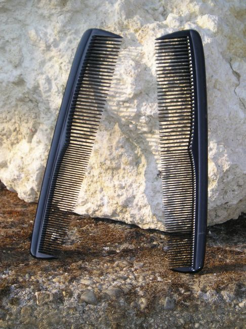 peigne corne sénior